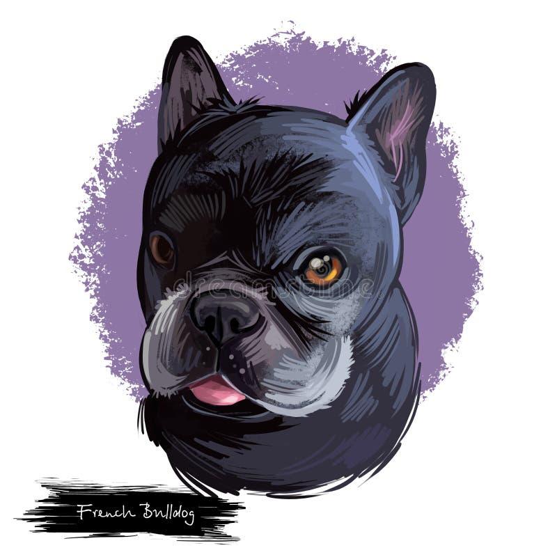 För hundavel för fransk bulldogg som illustration för konst digital isoleras på vit Populär valpstående med text Gullig husdjurha royaltyfri illustrationer
