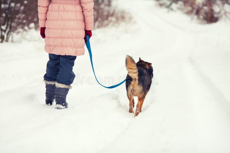 för hundgriffon för avel bruxellois barn för kvinna royaltyfri foto