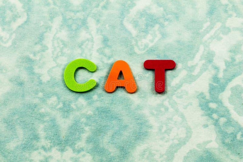 För husdjurdjur för katt bokstäver för barn för katt- pass förskole- royaltyfri foto