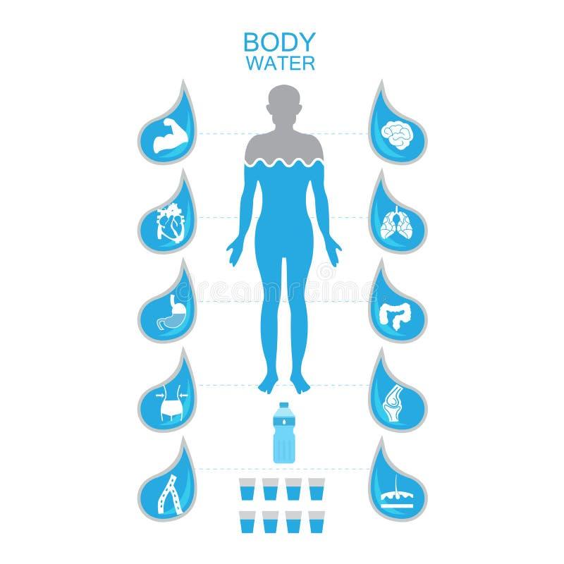 För illustrationdrink för kropp vård- infographic tecken för uttorkning för symbol för vatten stock illustrationer