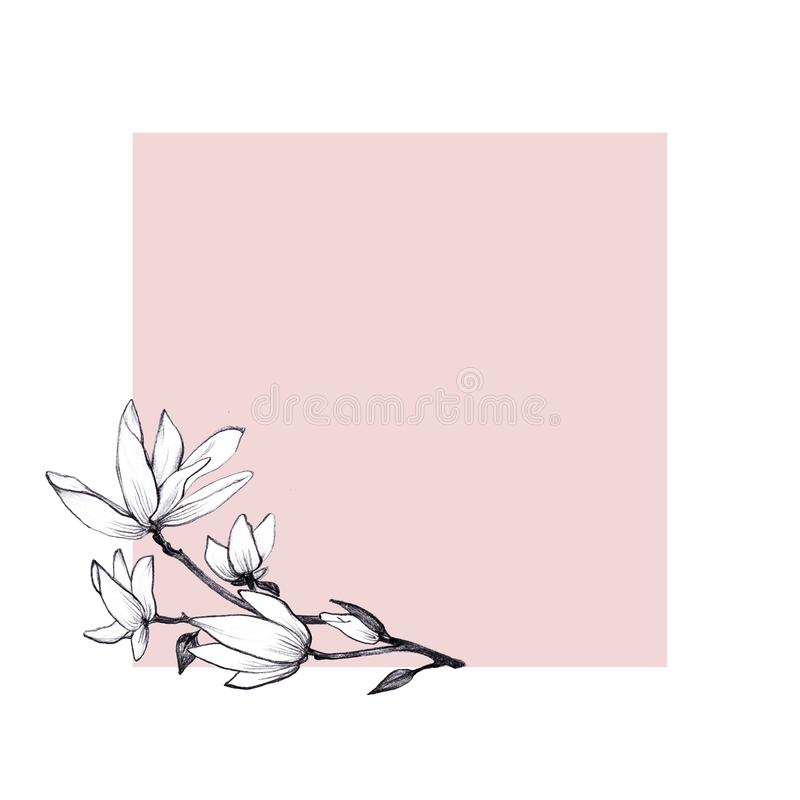 För illustrationmagnolia för hand utdragna blommor på rosa bakgrund stock illustrationer