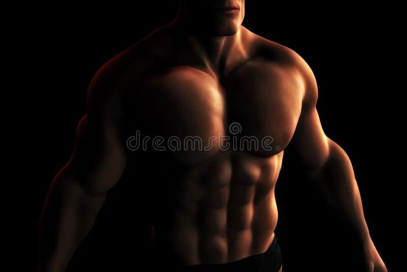 för illustrationmanlig för kroppsbyggare digital torso stock illustrationer