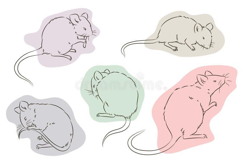 för illustrationorange för bakgrund ljust materiel Översikt av musen i en olik position royaltyfri illustrationer