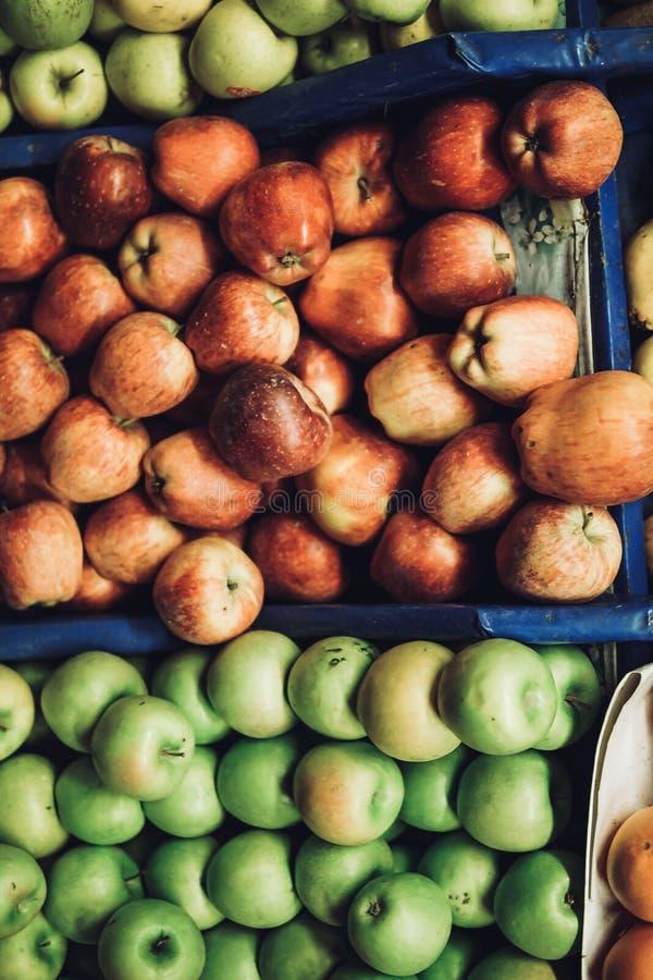 för illustrationred för äpplen grön vektor arkivbilder