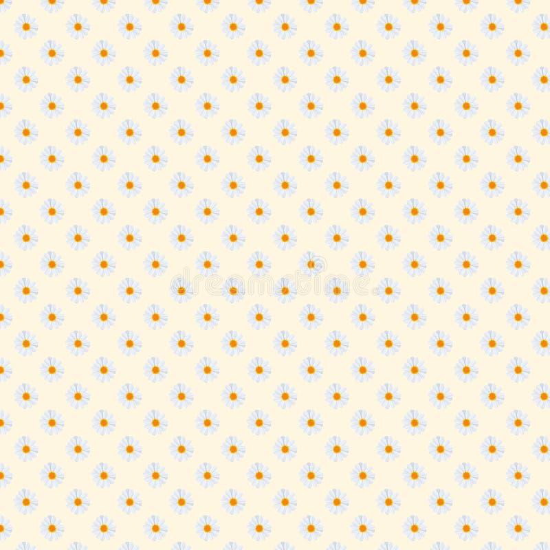 för infalltusenskönor för 5000x5000px 300dpi Digital för bakgrund för modell för fält för tusensköna blom- papper royaltyfri illustrationer