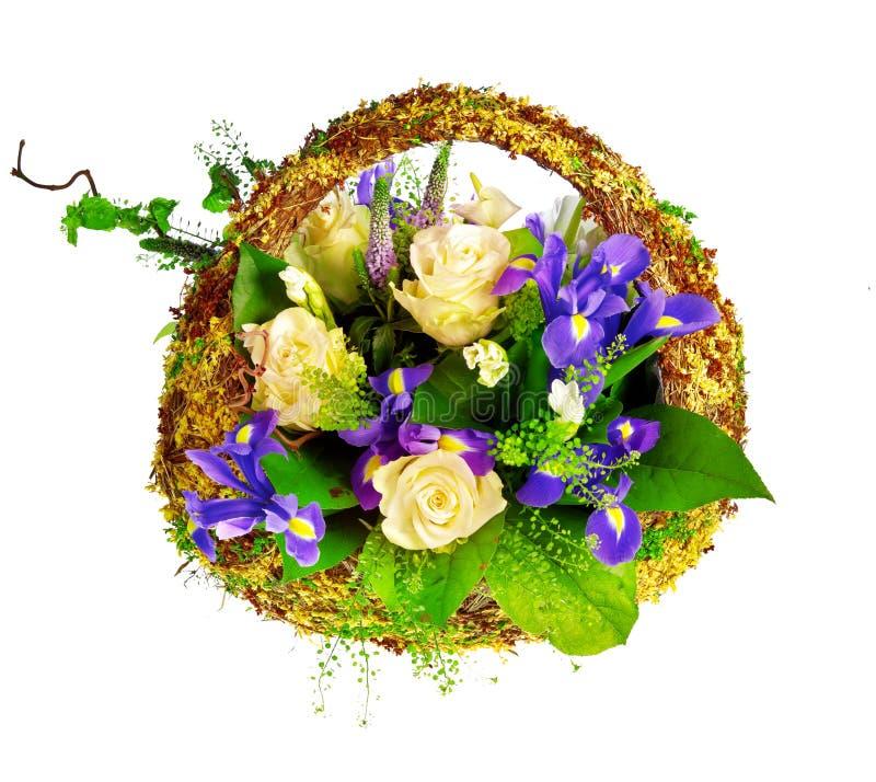för irisro för korg holländsk xiphium för veronica arkivfoto