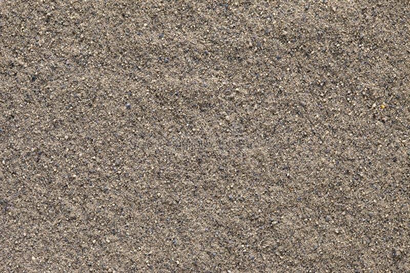 för jordningsnigrum för bakgrund svart pipblåsare för peppar arkivbild