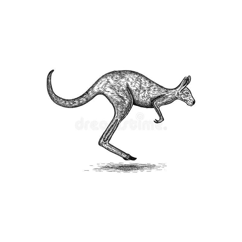 För kängurulogo för hand utdragen inspiration för design stock illustrationer