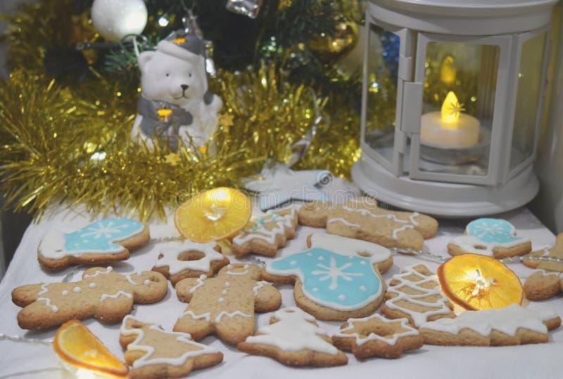 För kakaGarland Dry för jul ljust rödbrun julgran apelsin royaltyfri foto