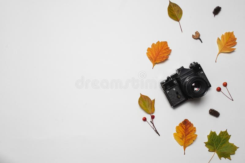 För kamera- och höstnedgång för tappning retro sidor med röda bär och lönnlövet Hudflänga den lekmanna- bästa sikten kopiera avst arkivfoto