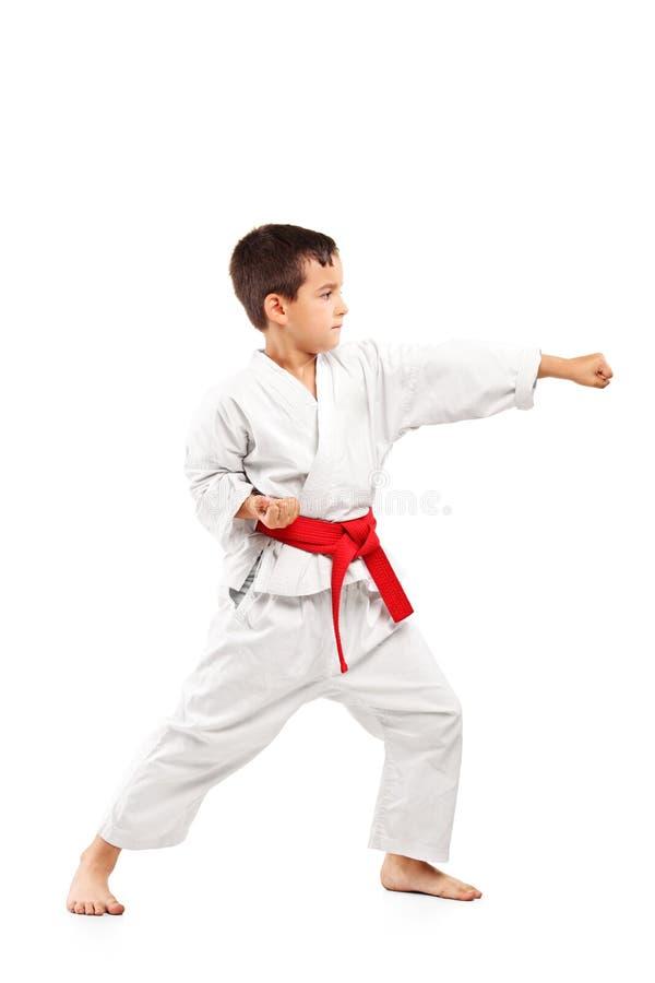 för karatelängd för barn fullt posera för stående arkivbild