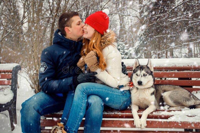 För kindsammanträde för lyckliga härliga par kyssande Husky Bench Snowfall Winter Park för Siberian för bänk stående royaltyfria foton