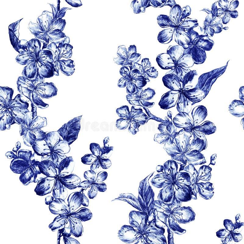 För kolblyertspenna för hand utdragna blommor för illustration av de blåa pulmblomningarna i tappningstil Härligt elegant sömlöst royaltyfria foton