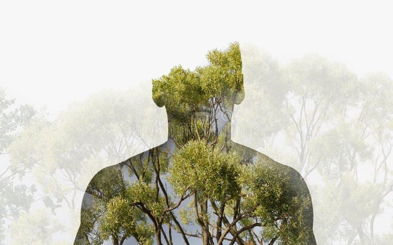 För konturhuvud för dubbel exponering stående av en fundersam man som kombineras med fotografiet av skoglandskapet royaltyfri bild
