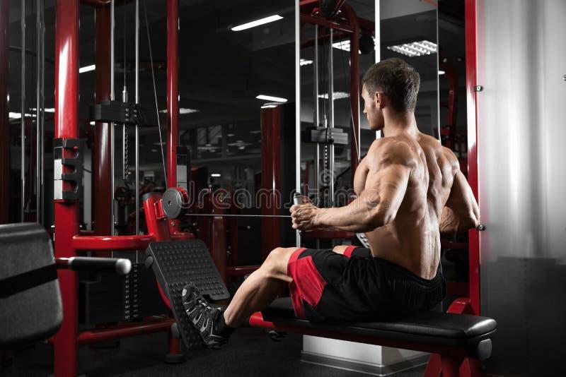 För kroppsbyggareutbildning för idrottsman nen muskulös baksida på simulatorn i idrottshallen royaltyfria foton