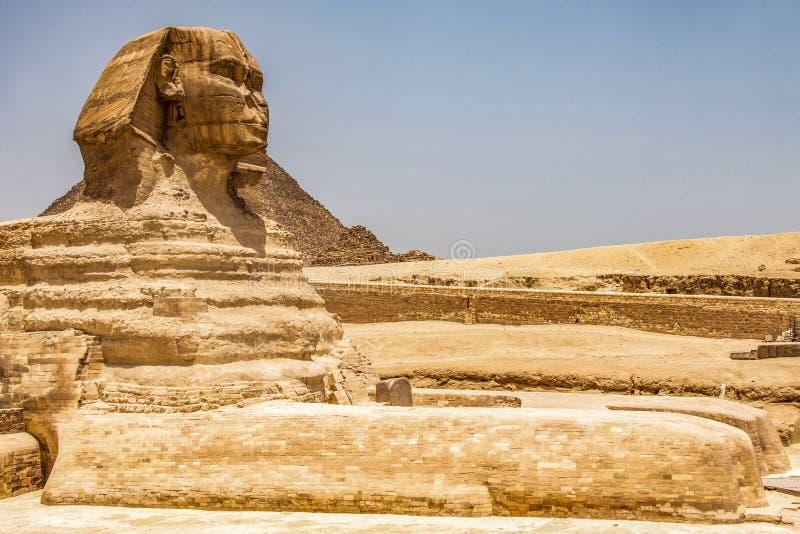 För kroppstående för egyptisk stor sfinx fullt huvud, med pyramider av Giza bakgrund Egypten som är tom med inget kopiera avstånd arkivfoto