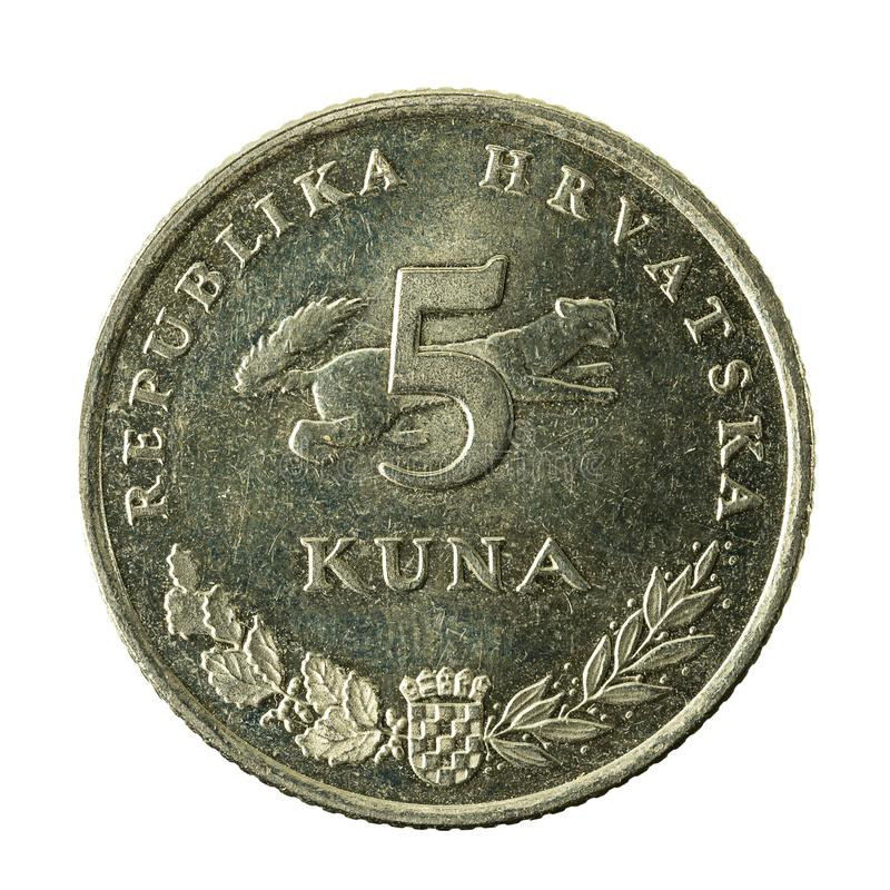 för kunamynt för 5 kroat avers 2009 royaltyfri fotografi
