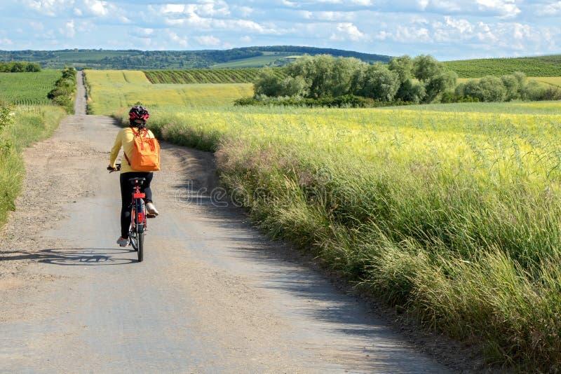För kvinnacyklist för bakre sikt ritt på cykeln royaltyfria foton