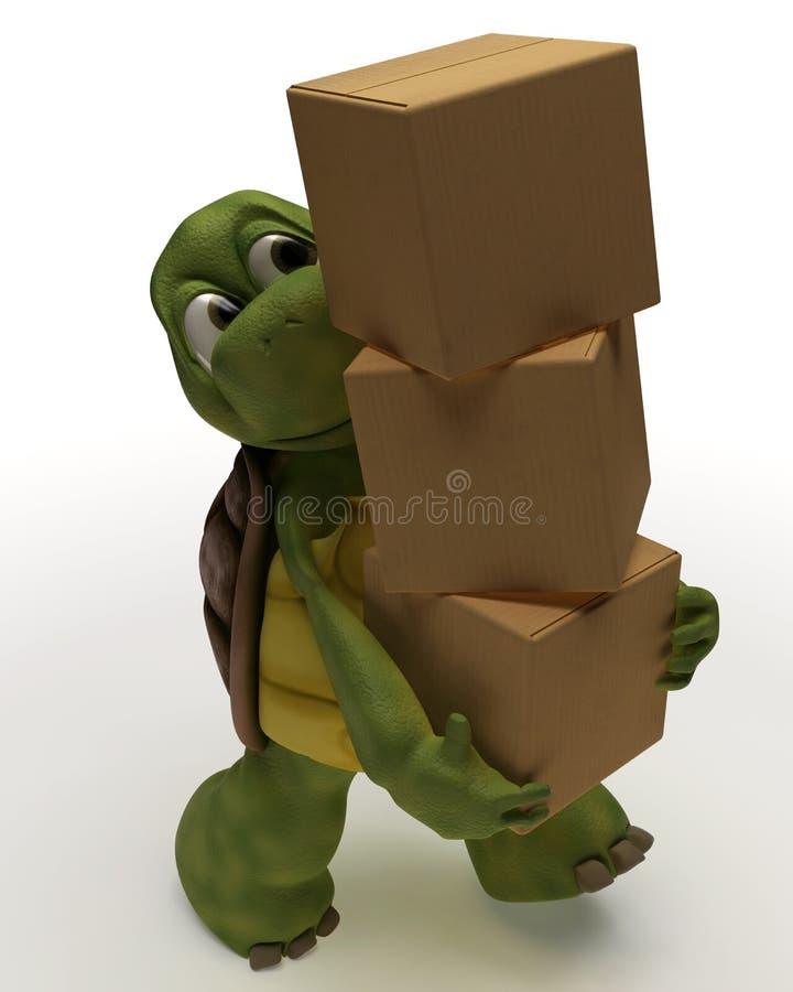för lådaemballage för karikatyr bärande sköldpadda vektor illustrationer