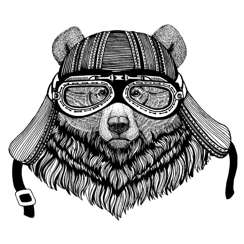 För löst hjälm för motorcykel cyklistdjur för grisslybjörn bärande r stock illustrationer