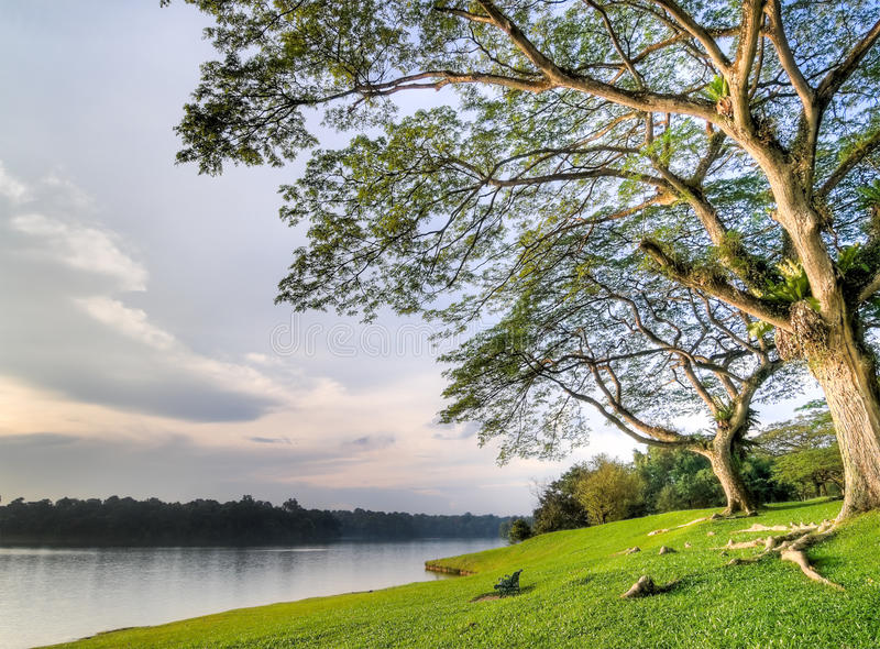 för lakepark för bänk tom solnedgång för kust royaltyfri foto