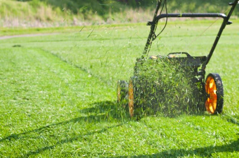 för lawngräsklippningsmaskin för bakgrund clipping isolerad white för bana royaltyfri foto