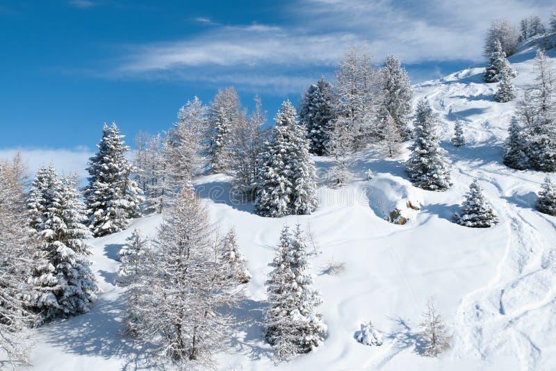 för ligganderussia för 33c januari ural vinter temperatur royaltyfria foton