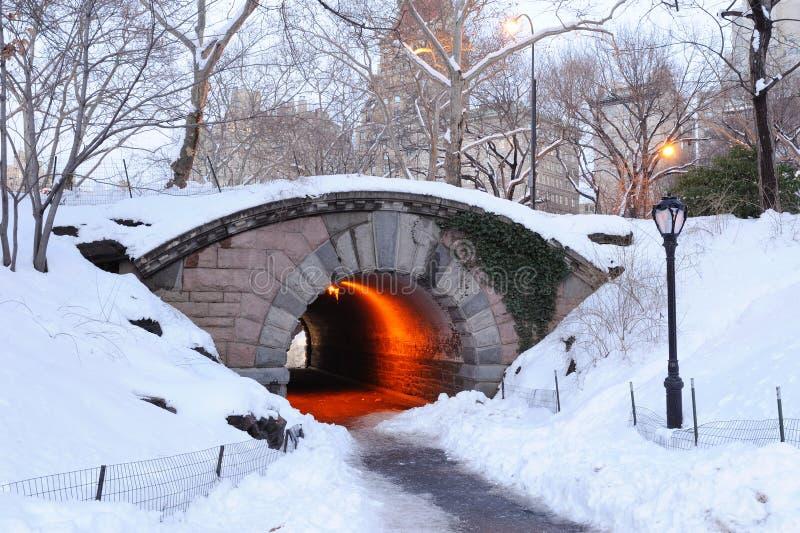för manhattan för central stad vinter york ny park royaltyfri fotografi