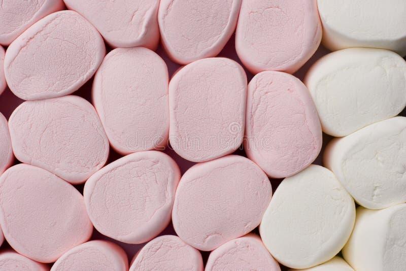för marshmallowspink för bakgrund jätte- white arkivbild