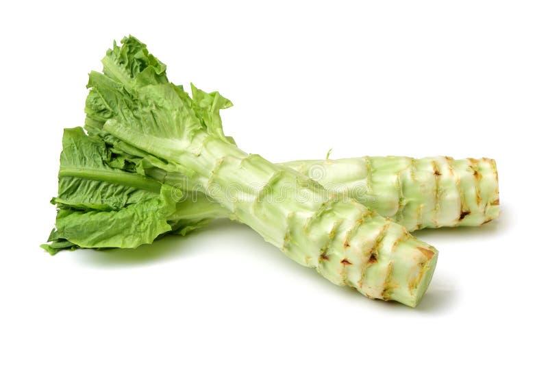 för matgrönsallat för sparris kinesisk restaurang arkivfoton