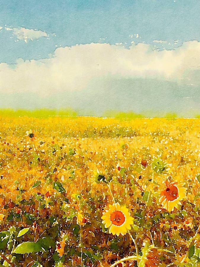 för mittfält för bi yellow för solros för sun för sommar för ljus blomma sen stock illustrationer