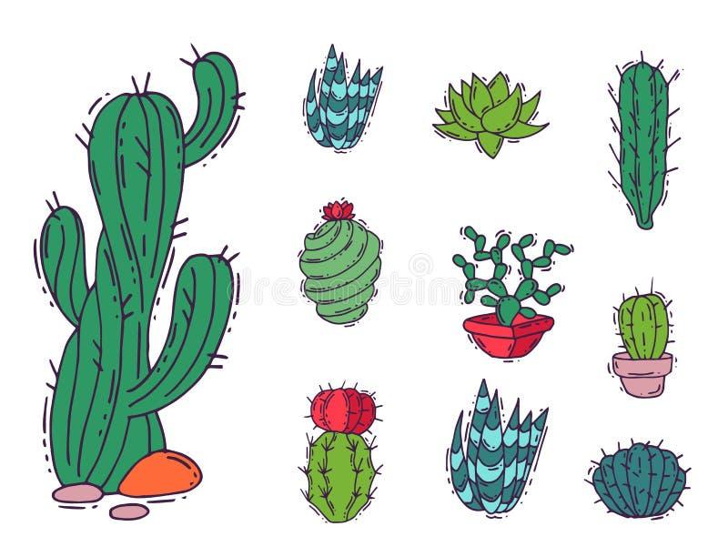 För naturvektor för kaktus hem- illustration av det cactaceous trädet för grön växt med blomman stock illustrationer