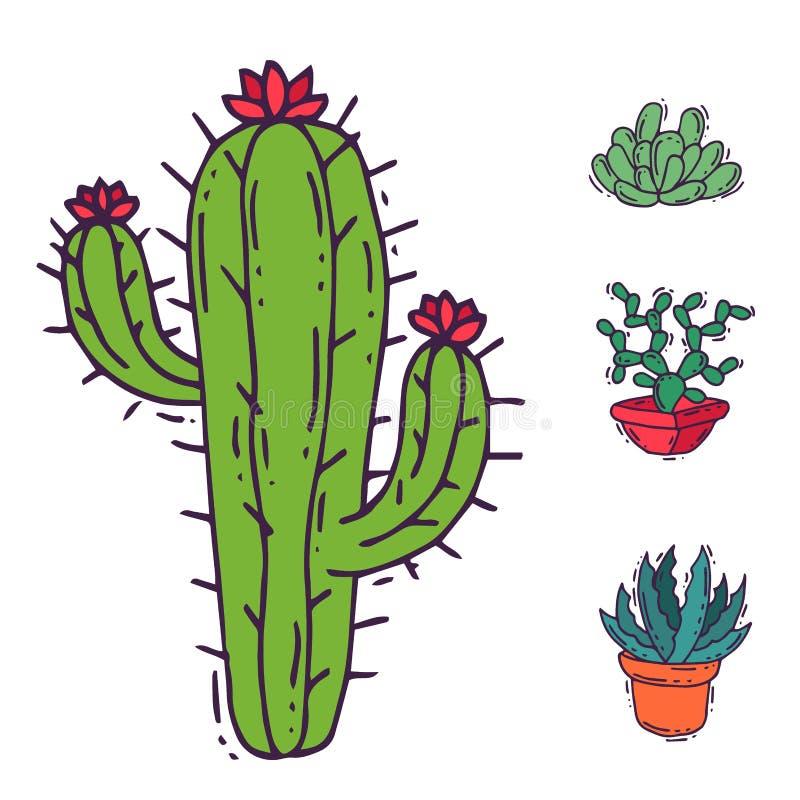 För naturvektor för kaktus hem- illustration av det cactaceous trädet för grön växt med blomman royaltyfri illustrationer
