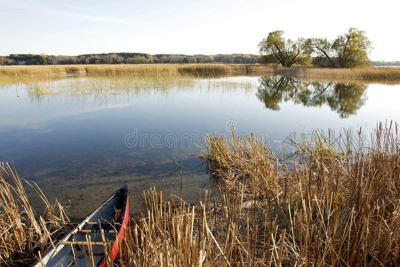för ontario för lake för fjärdlivsmiljöile waterfowl presqu royaltyfria foton