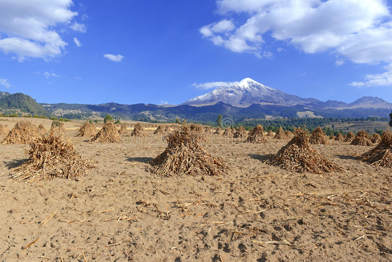 för orizabapico för de mexico vulkan arkivbilder