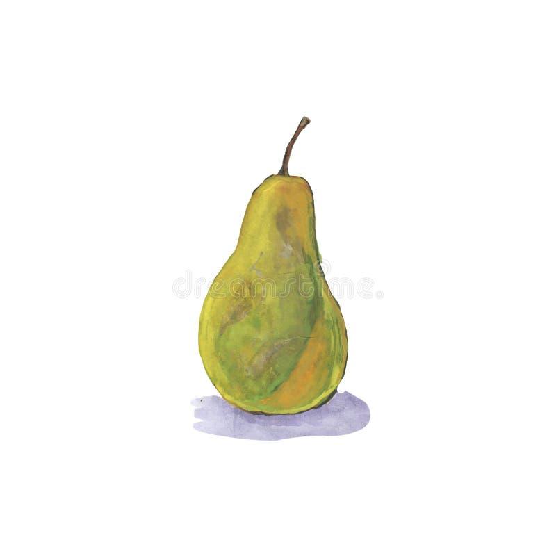 för päronfrukt för vattenfärg gul helhet stock illustrationer