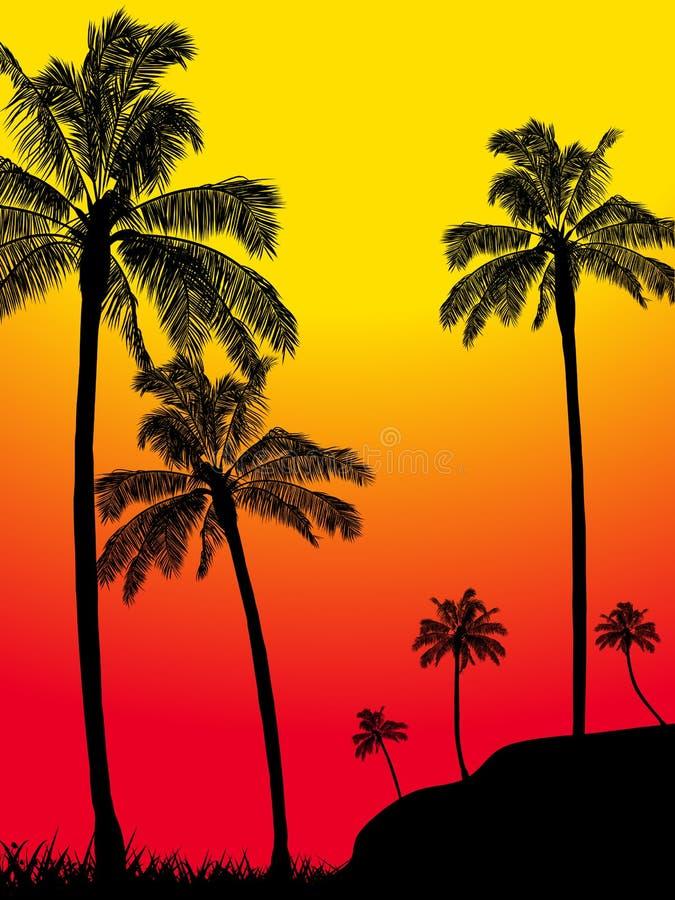För palmträdskog för abstrakt sommar tropisk kontur arkivfoton