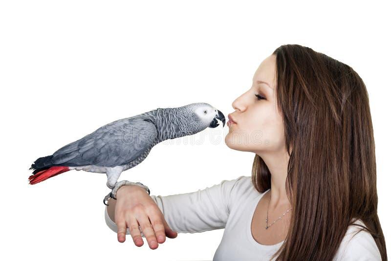 För papegojaang för afrikanska grå färger ung flicka fotografering för bildbyråer