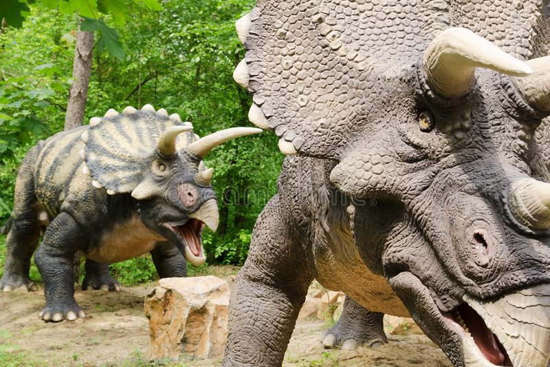 För parkerar dinosauriemodellen Triceratops i dinosaurie royaltyfri fotografi