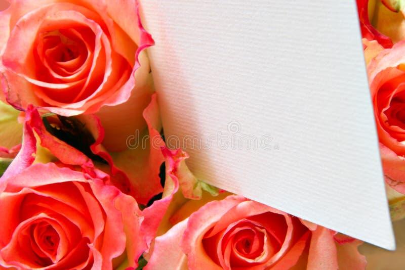 för pinkro för blankt kort besök arkivfoton