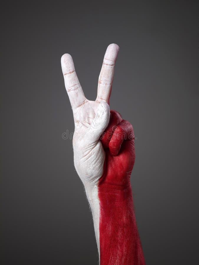 för poland för flagf hand målad seger symbol royaltyfria foton