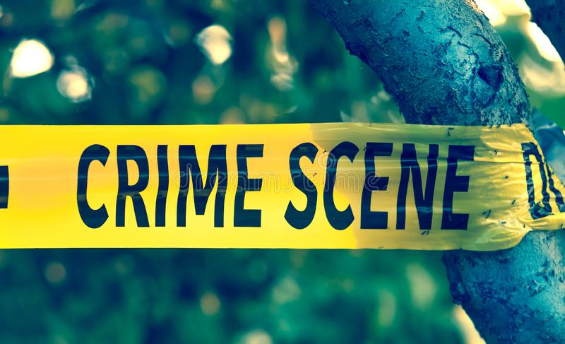 För polisband för brottsplats gul closeup royaltyfri bild