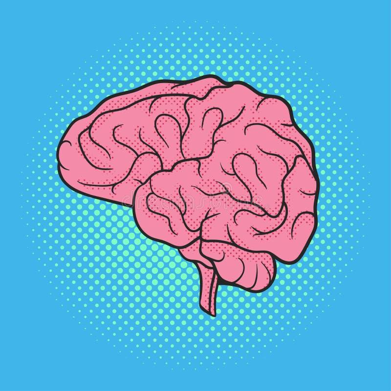 För popkonst för vektor hand dragen illustration av hjärnan retro stil royaltyfri illustrationer