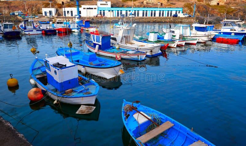 För portFuerteventura för El Cotillo öar kanariefågel royaltyfria bilder