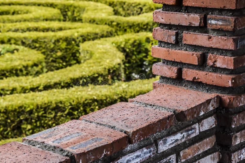 För röd tegelsten för väggen och kontrasterar den trädgårds- bakgrundsabstraktionen för gräsplan arkivfoton