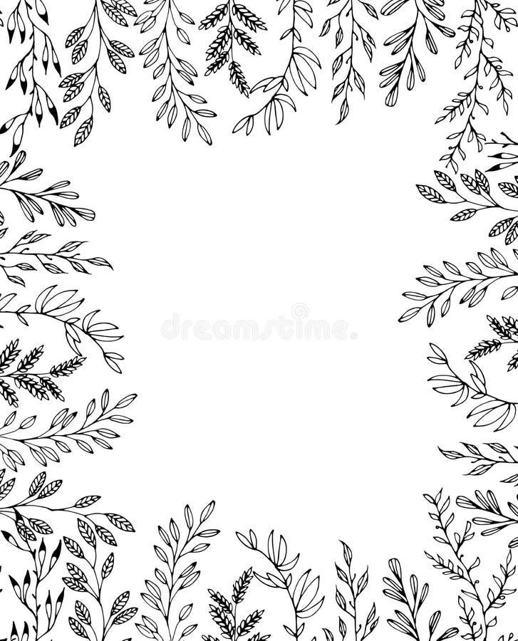 För ramwhith för blom- hand utdragen prydnad för botanik royaltyfri illustrationer