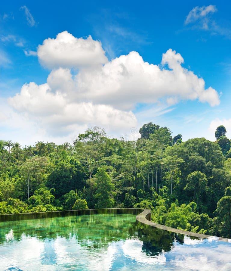 För regnskognatur för härlig pöl tropiskt landskap arkivbilder