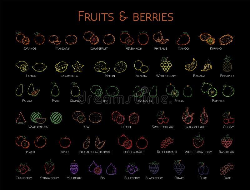 För rengöringsduksymbol för översikt färgrik linjär uppsättning - frukt & bär gör djärvt tunnare vektor illustrationer
