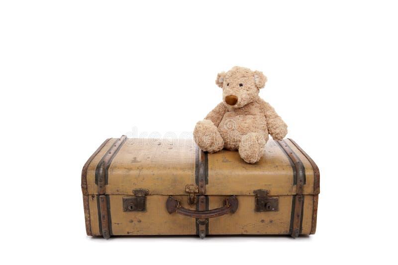 för resväskanalle för björn gammal tappning arkivbild