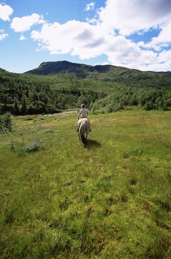 för ridningsikt för häst bakre barn för kvinna arkivfoto